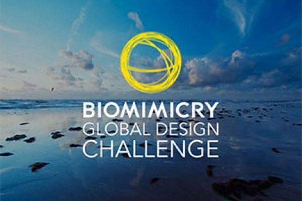 Biomimicry-Global-Design-Challenge